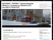 """Магазин """"ПРОФИ"""" г.Сланцы ул.Ленинад.23"""