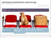 Ветеринар в Великом Новгороде — ветуслуги, вызов ветеринара на дом