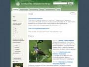 Сообщество натуралистов Югры: здесь обитают зоологи, ботаники