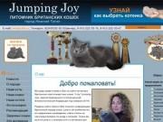 Jumping Joy :: Питомник британских кошек :: город Нижний Тагил