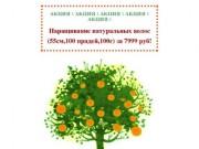 """Салон красоты """"Апельсин"""" :: Мурманск, ул. Старостина, 23. Тел"""