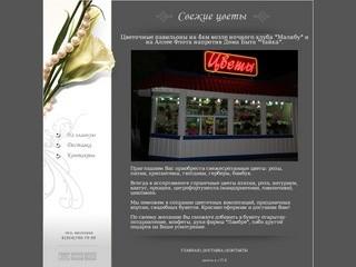 Свежие цветы. г.Петропавловск-Камчатский