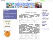 ЦРР Детский сад №17 г. Новодвинска (Муниципальное дошкольное образовательное учреждение «Центр развития ребёнка – Детский сад №17 «Малыш» первой категории)