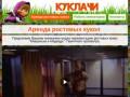 Аренда ростовых кукол в Санкт-Петербурге. Прокат ростовых костюмов в Спб.