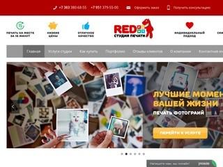 Студия 3D Печати в Новосибирске - ПринтПони.ру