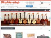 Интернет-магазин музыкальных инструментов (Россия, Новосибирская область, Новосибирск)