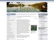 Общественный сайт Борка