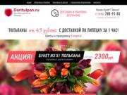Daritulpan.ru - доставка цветов в Липецке