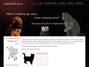 YoskinKorm.ru - интернет зоомагазин Йошкар-Олы