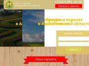 Купить поросят в Архангельской области