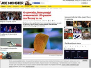 Joe Monster.org - Probably The Best Page In The Universe (Poland)