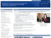 Муниципальное казённое учреждение администрация Немского городского поселения Немского района