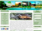 Активный отдых, рыбалка, охота в Волго-Ахтубинской пойме