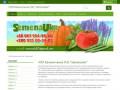 Продаем семена овощей и цветов по приемлемым ценам! (Украина, Черкасская область, Черкассы)