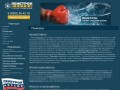 Предприятие «Фирма «Снабжение» - описание материалов системы Пенетрон (Республика Марий Эл, г. Йошкар-Ола,)