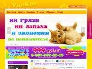УниКот - Как приучить кошку, кота, котенка к унитазу, горшку, лотку, туалету.