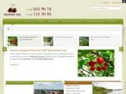 Добро пожаловать на сайт  ДП Вишневый сад!