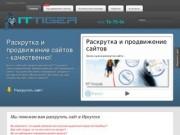 Иркутское агентство IT-Tiger (Компании «Тигр») - раскрутка и продвижение сайтов 76-75-04 (в Иркутске)