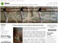 Allbalet.ru — Балет Танцы Хореография