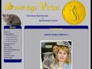 Питомник британских и бурманских кошек «Sovereign Virtue» (г.Самара)