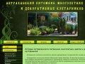 Астраханский питомник многолетних цветов и декоративных растений. О компании
