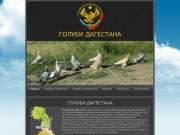 ГОЛУБИ ДАГЕСТАНА - сайт о бойных породах голубей (бойные голуби Дагестана, Махачкалинские цветнохвостые, дагестанские голуби)