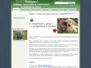 Поводок - помощь бездомным животным в Лодейном Поле