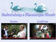 Видеосъёмка праздников (Видеосъёмка в Павловском Посаде)