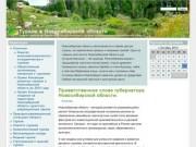 История Куйбышева (Каинска) (Туризм в Новосибирской области)