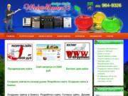 Создание сайта в Бийске. Раскрутка сайтов в Бийске. Продвижение сайта Бийск