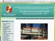 Профессиональный лицей Красносельский приветственное слово, набор учащихся