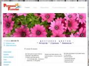 Петергофские цветы - Лучшее качество по низкой цене. Круглосуточно ждем Вас
