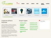 TechApple — Создание и раскрутка сайтов в Королеве, Мытищах, Пушкино, Щелково и Москве