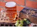 Продажа пива оптом (Россия, Московская область, Москва)