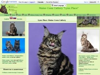 Питомник кошек мейн кун, разведение и продажа котят мейн-кун.