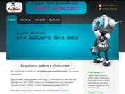 Разработка сайтов в Молодечно, создание сайтов в молодечно, купить сайт в Молодечно