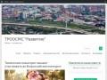 Тюменская региональная общественная организация содействия многодетным семьям «Развитие» (Россия, Тюменская область, Тюмень)