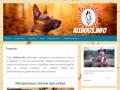 Необычные факты про собак. Заходите на сайт! (Россия, Нижегородская область, Нижний Новгород)