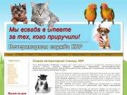Скорая ветеринарная помощь КБР г. Нальчик, Прохладный