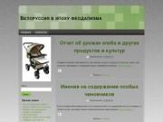 Белоруссия в эпоху феодализма
