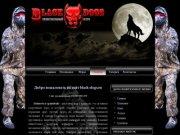 Главная|Белоозёрский пейнтбольный клуб BLACK-DOGS