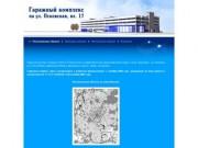 Гаражный комплекс на ул. Псковская, вл. 17. -- Расположение объекта --