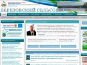 Березовский сельсовет »