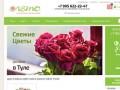 Интернет-магазин доставки цветов  «Цветы в Туле» (Россия, Тульская область, Тула)