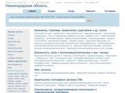 Нижегородская область,  актуальная информация по компаниям, тендерам, заключенным контрактам