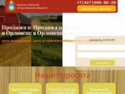 Купить поросят в Орловской области