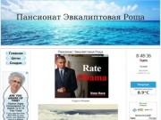 Пансионат Эвкалиптовая Роща Абхазия Официальный Сайт