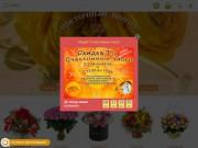 Заказать цветы с доставкой. Магазин Букетный дворик. (Россия, Нижегородская область, Нижний Новгород)