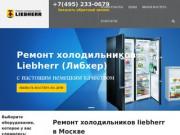 Фирма по ремонту холодильников. Качество гарантируем. (Россия, Нижегородская область, Нижний Новгород)