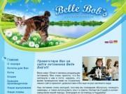 """Добро пожаловать на сайт - Питомник Курильских бобтейлов """"Belle Bob's"""""""